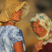 Farmer women drive the flock of sheep home in the evening. Lake Prespa National Park, Albania June 2009