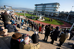 Racgoers watch the Syndicate Horse Parade at Cheltenham Racecourse