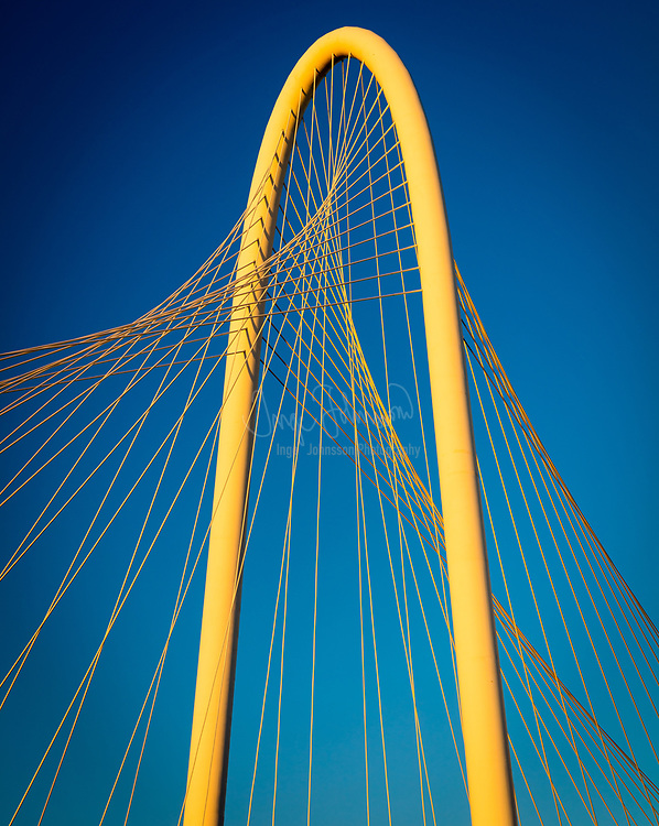 The Margaret Hunt Hill Bridge is a bridge in Dallas, Texas which spans the Trinity River and was built as part of the Trinity River Project. Designed by Santiago Calatrava, it is one of three such bridges planned to be built over the Trinity; the second, the Margaret McDermott Bridge, is currently under construction. The span parallels the Continental Avenue Bridge, a walking bridge.<br /> <br /> The bridge is named for Margaret Hunt Hill, an heiress and philanthropist.