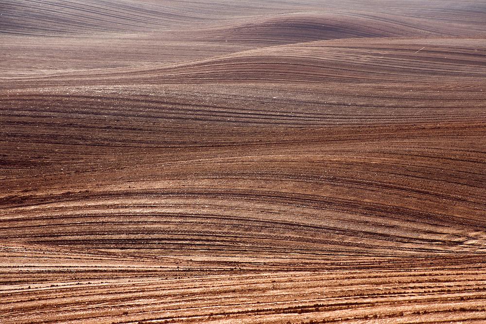 Nature_ Shapes & Patterns