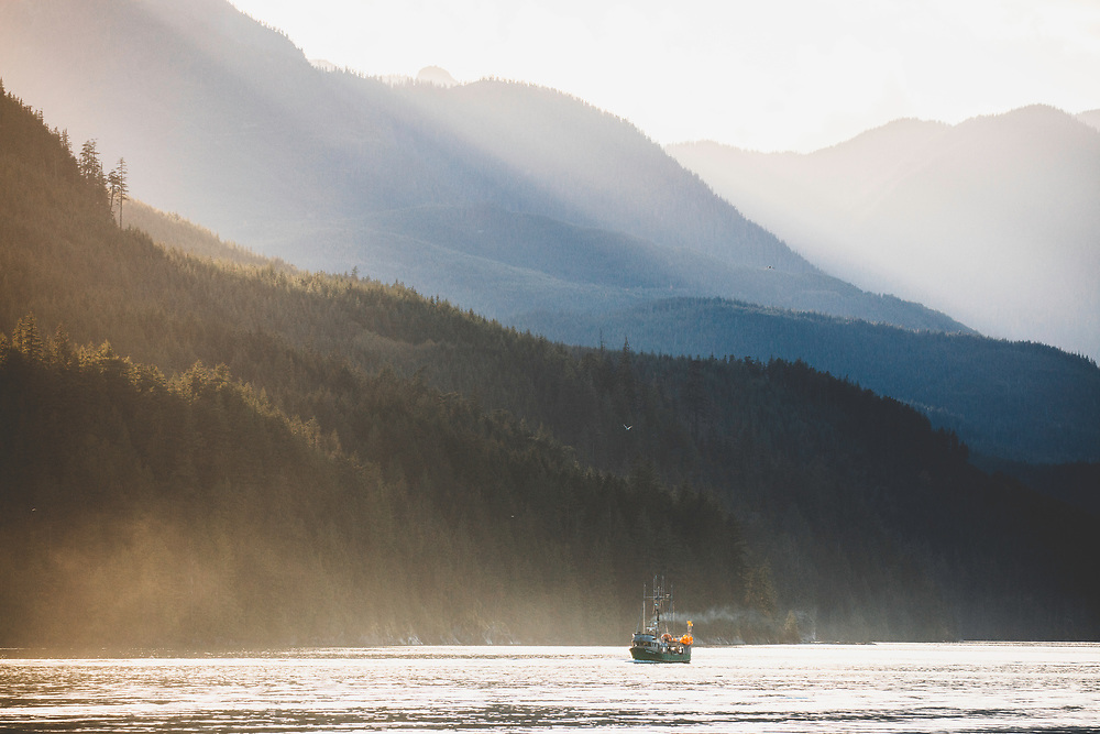 Commercial fishing the inside channels of Northern British Columbia.