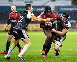 Thembelani Bholi of Southern Kings<br /> <br /> Photographer Simon King/Replay Images<br /> <br /> Guinness PRO14 Round 6 - Ospreys v Southern Kings - Saturday 9th November 2019 - Liberty Stadium - Swansea<br /> <br /> World Copyright © Replay Images . All rights reserved. info@replayimages.co.uk - http://replayimages.co.uk