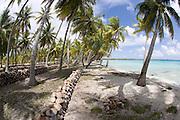 Copra plantation, Takapoto, Tuamotu Islands, French Polynesia<br />