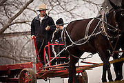 Amish man rides a horse drawn wagon to the Annual Mud Sale to support the Fire Department  in Gordonville, PA.