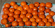 Locally grown persimmons laid out for sale at a road side stall near Thimphu. Thimpu, Druk Yul, Bhutan. 13 November 2007.