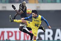 Paul Pogba Juventus, Lucas Castro Chievo <br /> Verona 31-01-2016 Stadio Bentegodi, Football Calcio Serie A 2015/2016 Chievo - Juventus. Foto Andrea Staccioli / Insidefoto