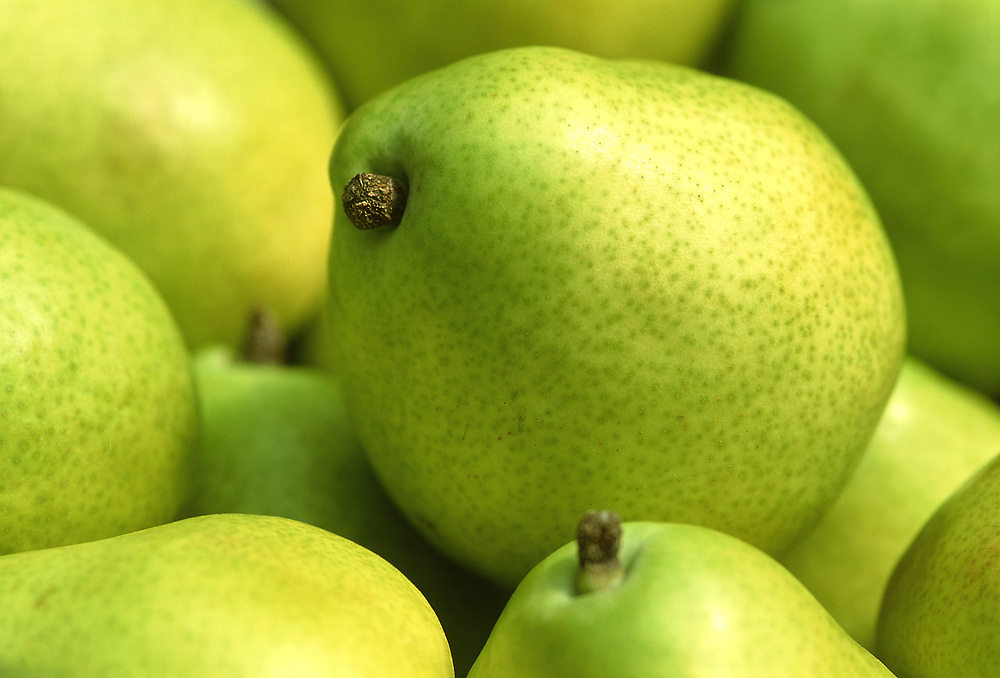 Close up selective focus photograph of some d'Anjou pears