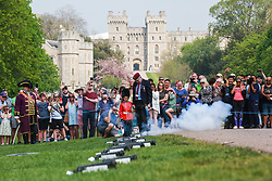 Windsor, UK. 22nd April 2019. John Matthews, borough bombardier, supervises a child dressed as a guardsman in firing a small cannon as part of a traditional 21-gun salute on the Long Walk in front of Windsor Castle for the Queen's 93rd birthday. The Queen's official birthday is celebrated on 11th June.