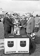 Presentation of Guinness Trophy T. Prendegast to winner of Guinness Handicap Steeplechase, Punchestown, <br /> 10th May 1984