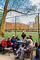 Elderly Chinese playing cards and Chinese chess, Columbus Park, Chinatown, New York, New York USA.
