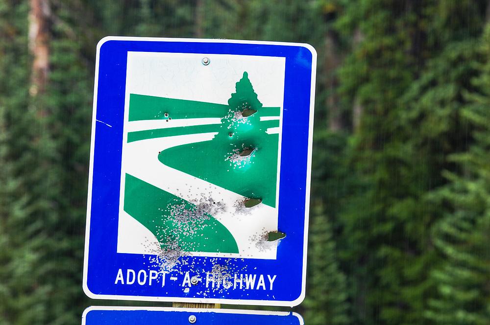 Vandalism, highway sign deformed by bullet holes, North Cascades Highway, Okanogan County, Washington, USA