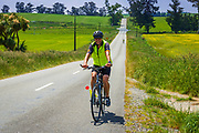 Cyclist in Middle Valley, Canterbury, South Island, New Zealand