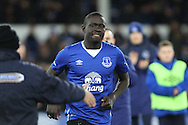 New Everton signing Oumar Niasse is welcomed by the Goodison crowd. Barclays Premier League match, Everton v Newcastle United at Goodison Park in Liverpool on Wednesday 3rd February 2016.<br /> pic by Chris Stading, Andrew Orchard sports photography.