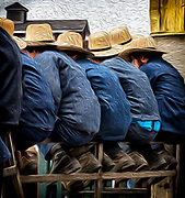 Menonites attending a horse auction.