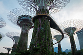 Singapore - The City in a Garden'
