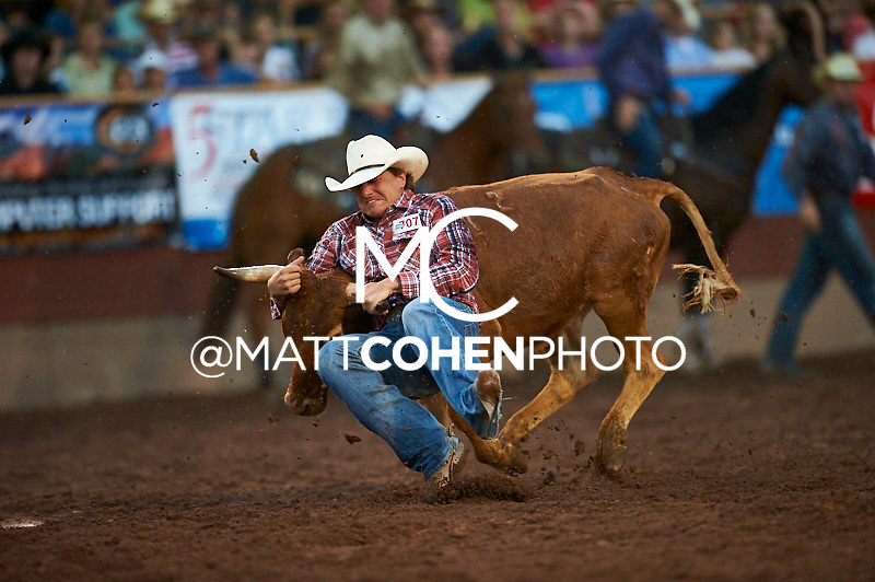 Steer wrestler Jesse Jolly of Agate, CO competes at the Pikes Peak or Bust Rodeo in Colorado Springs, CO.<br /> <br /> <br /> UNEDITED LOW-RES PREVIEW<br /> <br /> <br /> File shown may be an unedited low resolution version used as a proof only. All prints are 100% guaranteed for quality. Sizes 8x10+ come with a version for personal social media. I am currently not selling downloads for commercial/brand use.