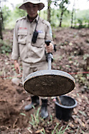With the help of the RENEW project (Restoring the Environment and Neutralizing the Effects of the War) and Norwegian People's Aid, a bomb-disposal expert uses mine detection equipment to clear mines in Quang Tri Province, Vietnam, Southeast Asia