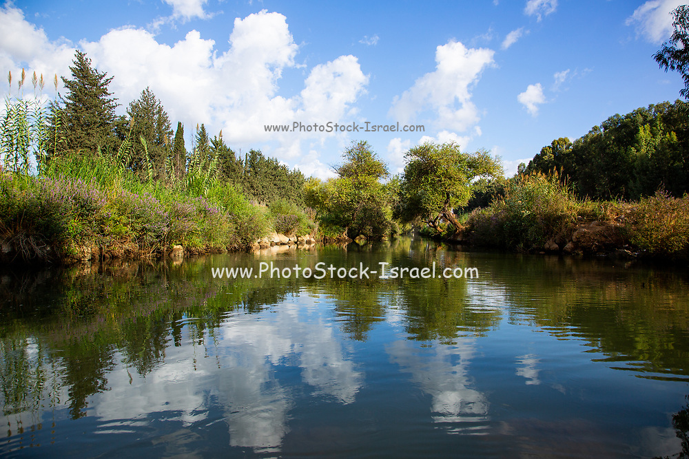 Fresh water spring and pond in the Upper Galilee, Israel