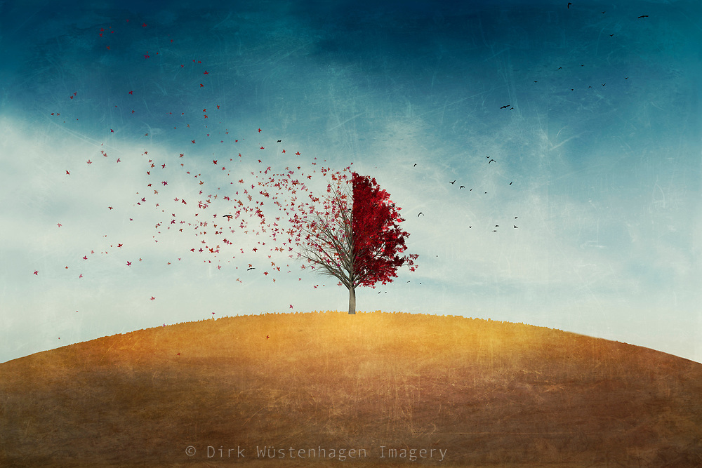 Illustration of a single tree with falling leaves that are blown by the wind.