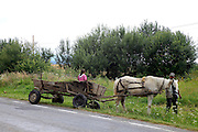 Neamt County, Romania Horse and cart