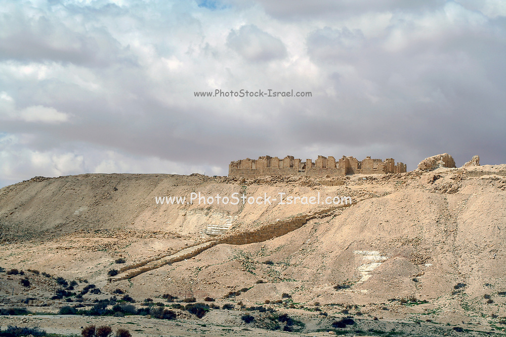 Tel Nitzana a Nabataean city located in the southwest Negev desert in Israel close to the Egyptian border.