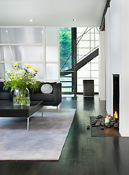 fireplace. 4325 Rosedale Ave Bethesda Levina Fici Pasquina architect and contractor