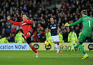 Kim Bo-Kyung of Cardiff City tries to charge down Manchester United's goalkeeper David De Gea's kick.<br /> Barclays Premier League match, Cardiff city v Manchester Utd at the Cardiff city stadium in Cardiff, South Wales on Sunday 24th Nov 2013. pic by Phil Rees, Andrew Orchard sports photography,