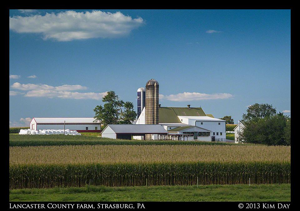 Lancaster County Farm<br /> Strasburg, PA<br /> August 2013