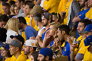 Fans cheer for the Golden State Warriors during Game 5 of the NBA Finals against the Cleveland Cavaliers at Oracle Arena in Oakland, Calif., on June 12, 2017. (Stan Olszewski/Special to S.F. Examiner)