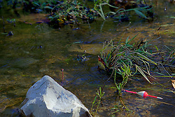 08 October 2013:   Below the spillway, a lonely fishing bobber is stuck on the rocks and plant life in the stream.<br />