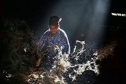 November 1, 2018 - Dhaka, Bangladesh - Workers work in a jute processing mill while sunrays enter through the rooftop in Narayanganj near Dhaka, Bangladesh. (Credit Image: © Mushfiqul Alam/NurPhoto via ZUMA Press)