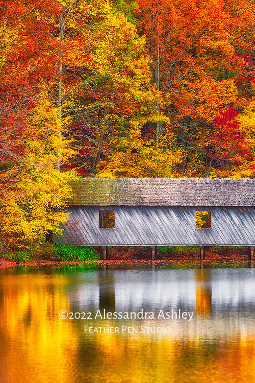 Fall foliage and reflections surround covered bridge at Madison County Nature Trail on Green Mountain, Huntsville, AL.