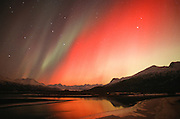 Alaska. Aurora borealis or northern lights. Hues of red and yellow above Knik River and Chugach Mts.