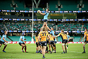 Max Douglas wins a lineout. NSW Waratahs v ACT Brumbies. 2021 Super Rugby AU Round 7 Match. Played at Sydney Cricket Ground on Friday 2 April 2021. Photo Clay Cross / photosport.nz