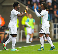 10th September 2017, Liberty Stadium, Swansea, Wales; EPL Premier League football, Swansea versus Newcastle United; Wilfried Bony of Swansea City comes on for Renato Sanches of Swansea City on his return to Swansea City during the transfer window <br /> <br /> Norway only