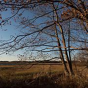 Sawyers Island, Rowley, Massachusetts is part of an 8,000 acre coastal marshland