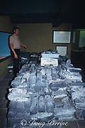 silver bars from the wreck of the Nuestra Senora de <br /> Atocha, Spanish treasure galleon sunk in 1622 off <br /> the coast of Key West, Mel Fisher's Treasure Museum, Key West, Florida, USA
