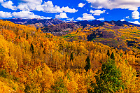 Fall color, McClure Pass, near Redstone in western Colorado USA.