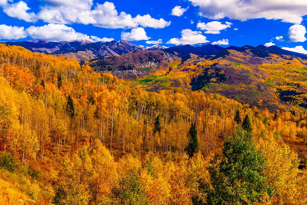 Fall color, McClure Pass, near Redstone in western Colorado USA.