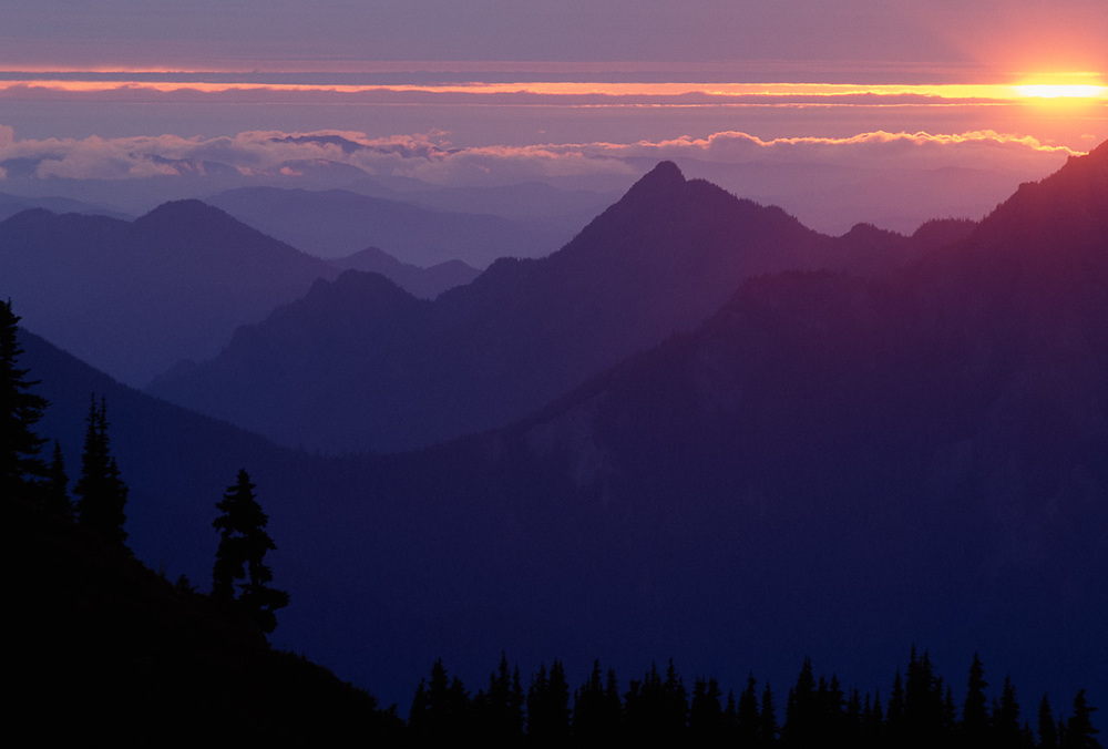 View from Hurricane Hill, sunset, Olympic Natinal Park, Washington, USA