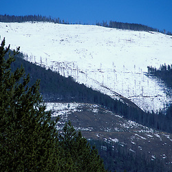 Yaak Valley, MT. Clearcuts in Montana's Kootenai National Forest.