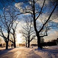 Sandy Hook in the Snow