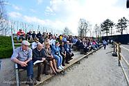 2019-03-hengstenshow-krismar-vdheffinck
