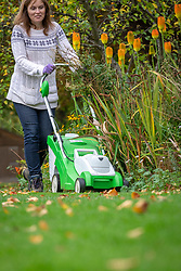 Raising the height of lawn mower blades before the last cut of the season before winter. Using the mower to collect fallen leaves