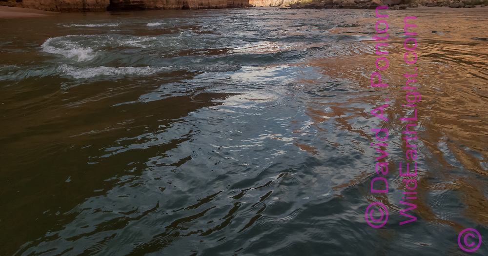 Modest flow speed of the Colorado River through most of the Marble Canyon section of the Grand Canyon causes slight waves in the surface, © David A. Ponton