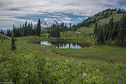 Tarn at base of Maches Peak with Mt Rainier in the background.