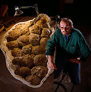 Paleontologist Jack Horner with Dinosaur Egg Nest from Montana.  Jack was much of the inspiration for Michael Crighton's Jurassic Park novel.