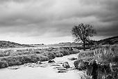 Views of Devon