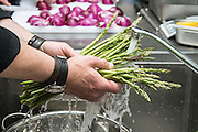 Chef prepares and washes asparagus in a restaurant