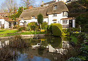 Thatched Spring cottage chalk pool pond in village of Bishopstone, Wiltshire, England, UK